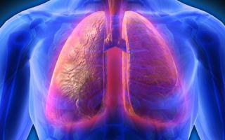Симптомы и лечение стафилококковой пневмонии