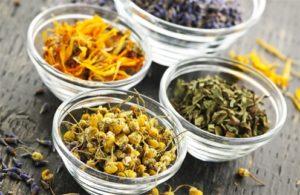 Какие выбрать травы от кашля для детей